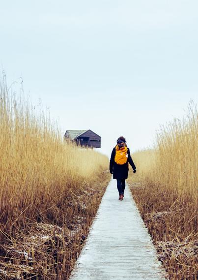 vrouw loopt door natuurgebied
